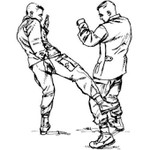 Army COMBATIVES FM3-25.150