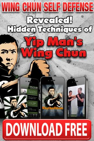 Free Wing Chun Martial Arts cell phone app