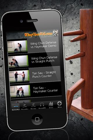 Wing Chun Martial Arts screenshot 3
