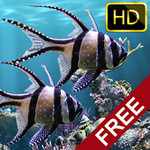 The real aquarium - HD