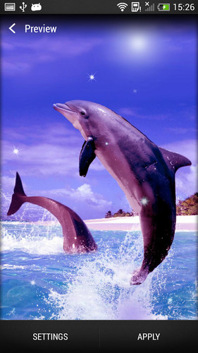 Dolphin Live Wallpaper screenshot 2