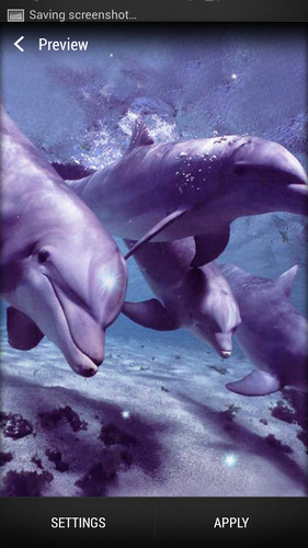 Dolphin Live Wallpaper screenshot 3