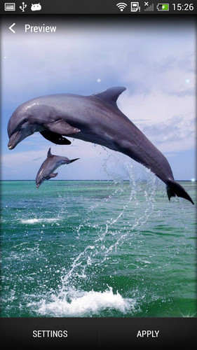 Dolphin Live Wallpaper screenshot 6