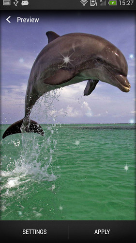 Dolphin Live Wallpaper screenshot 7