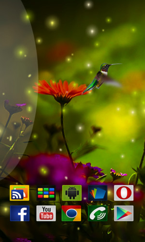 Free Birds HD in Live Wallpaper cell phone app