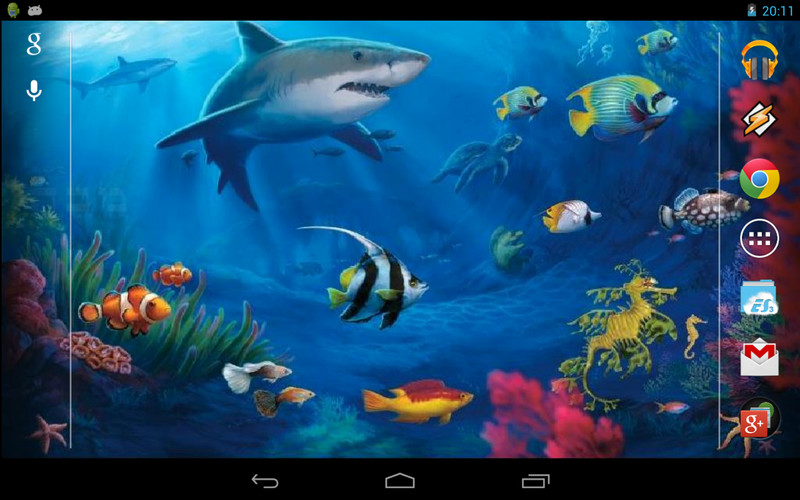 Free Interactive Shark cell phone app