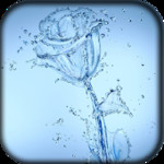Watery Rose HD Live Wallpaper