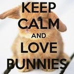 Keep Calm And Bunny ON