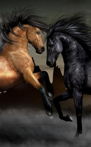Horses Live Wallpaper screenshot 3