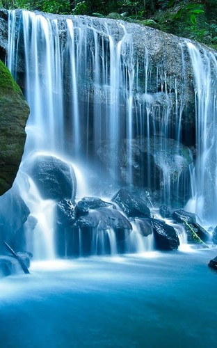 Free Wild Waterfalls Live Wallpaper cell phone app
