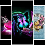 Butterfly Fashion Wallpapers