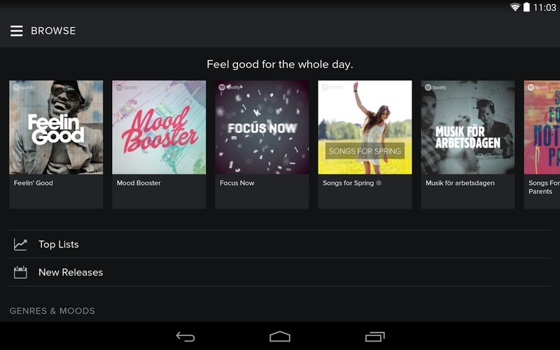 Spotify screenshot 3