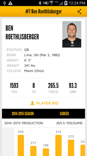 Pittsburgh Steelers screenshot 6