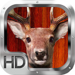 Whitetail Deer Hunter