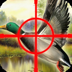 Duck Commander - Hunting Game