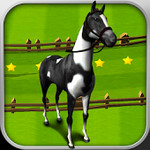 Horse Derby Race Training Free