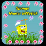 Sponge Hunter jellyfish