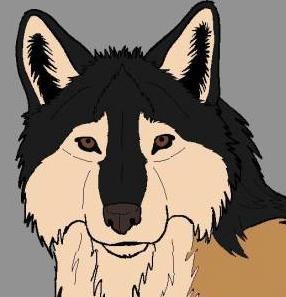 wolfeguardian