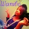 wanibo123